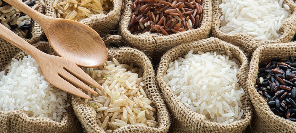 Rice Background Header.jpg